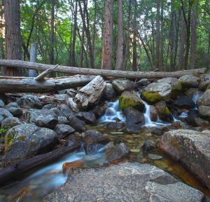 Bridalveil Falls turns into a wonderful creek.