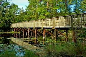 unf bridge